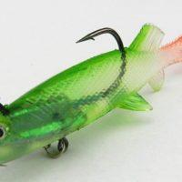 FishGel1
